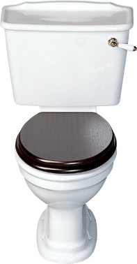 Avoca Classique WC with cistern and fittings