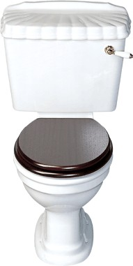 Avoca Shell WC with cistern and fittings