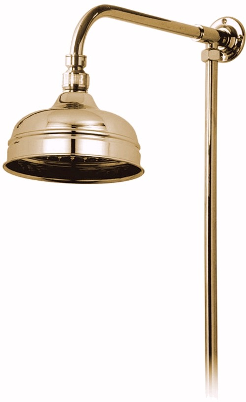 "Larger image of Vado Westbury Traditional rigid riser in gold with 6"" shower head."